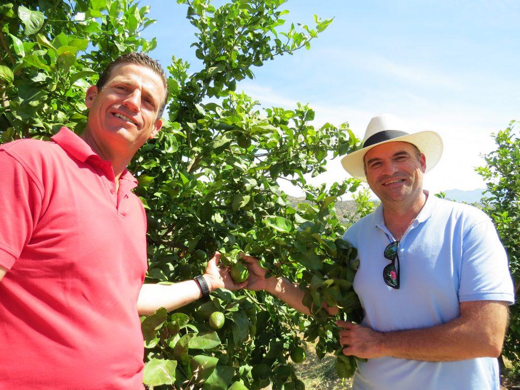 Juan und Mitarbeiter in ihrem Orangenhain