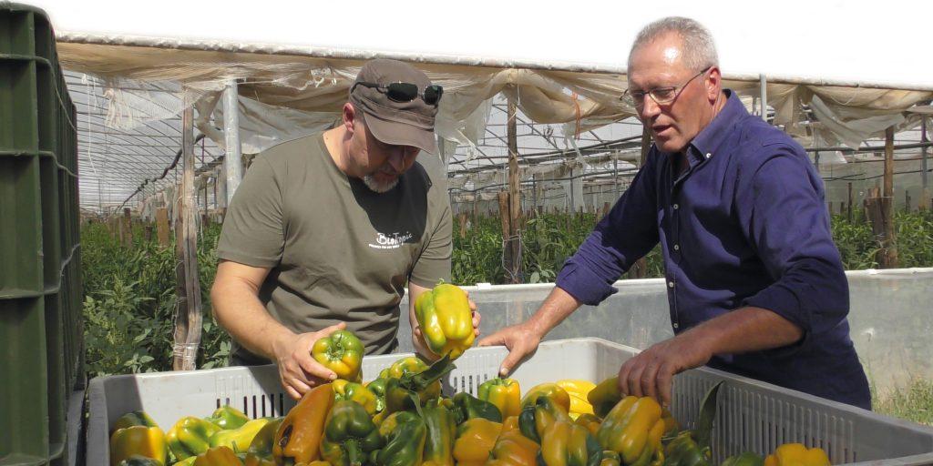 Bio-Anbauberater Mauro Finotti von Biotropic (links) mit Michele Russo