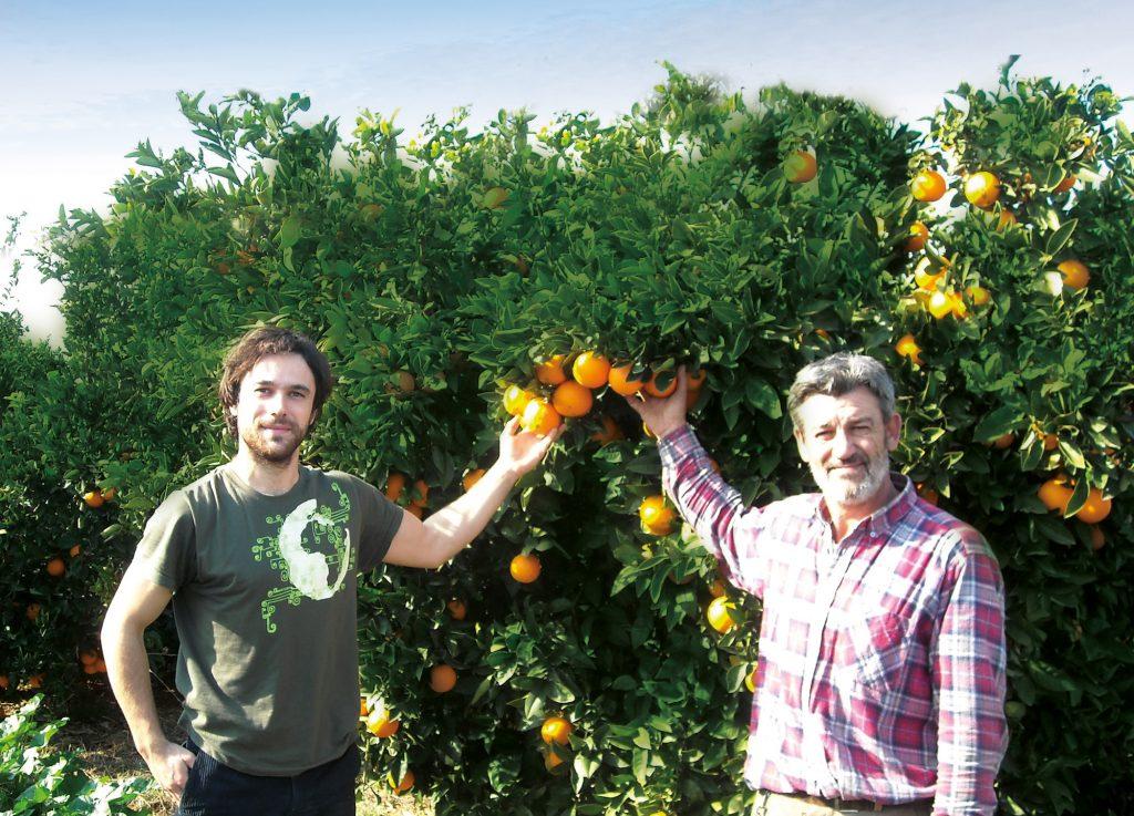 Oscar & Jonas Morell vor einem Orangenbaum