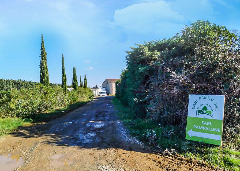 Blick auf die Einfahrt zum Anwesen der Pampalones